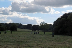 Residents Walking on the Common