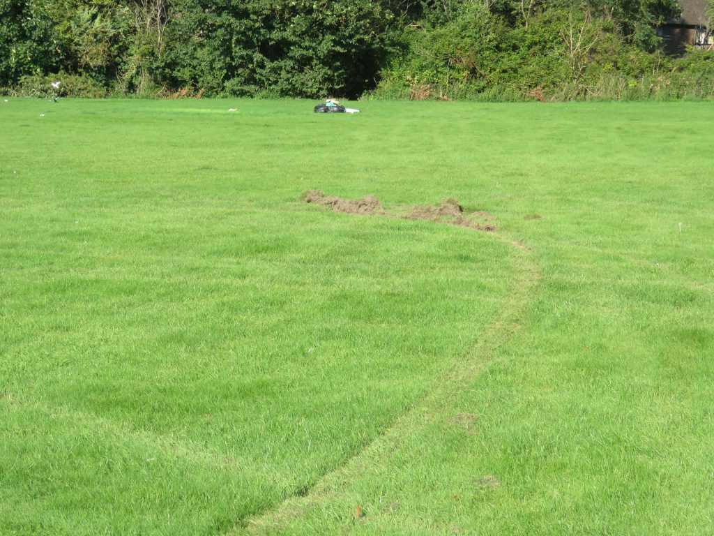 Damage to KGV Playing Fields